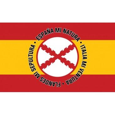 http://www.tiendafalangista.com/1401-thickbox_default/ramiro-el-primer-revolucionario-español.jpg