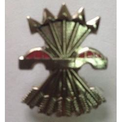 Pin Falange