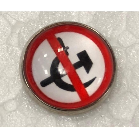 PIN Anticomunista